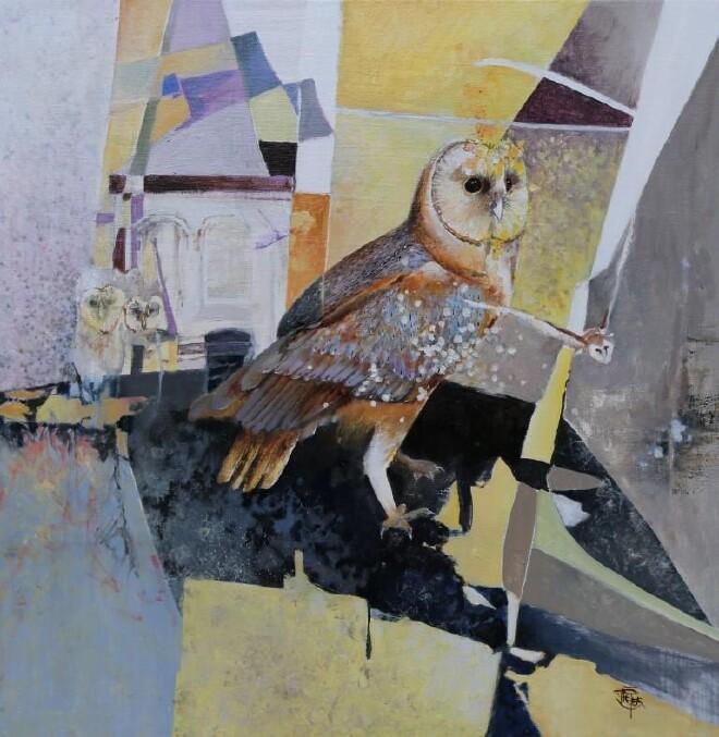 Baren Owl-M