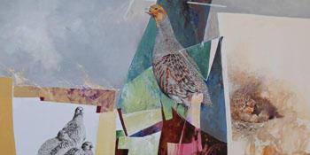 Partridges - M