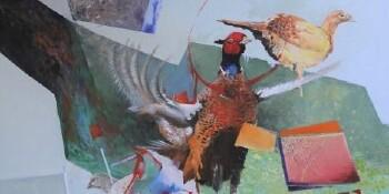 Pheasant - M